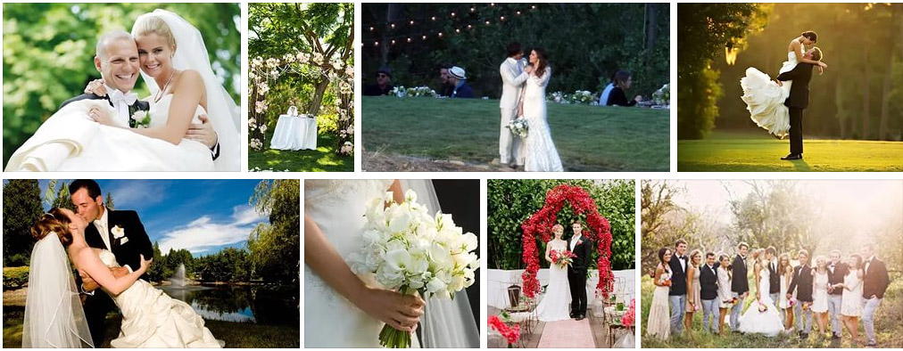 svadba-v-iyune