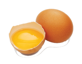 egg_PNG4509